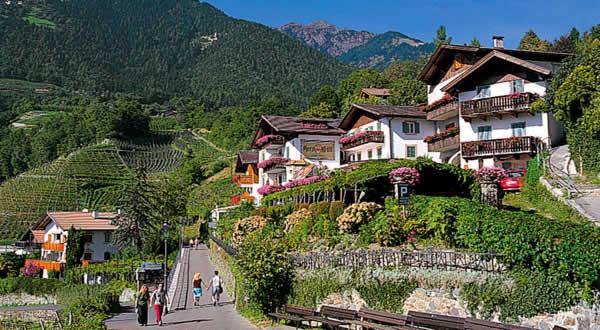 Pension Lafod Dorf Tirol Amp Umgebung Bei Meran In S 252 Dtirol